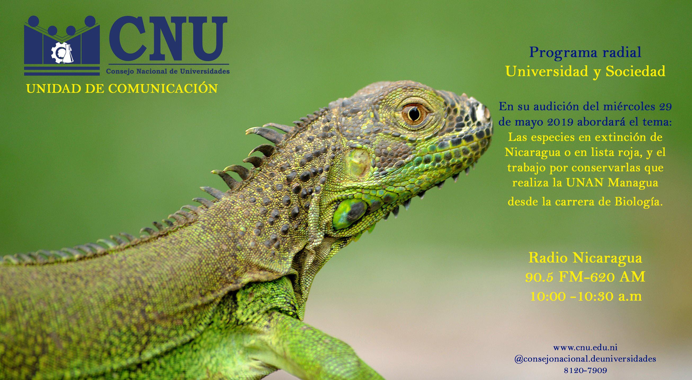 Iguana-CNU-RADIO